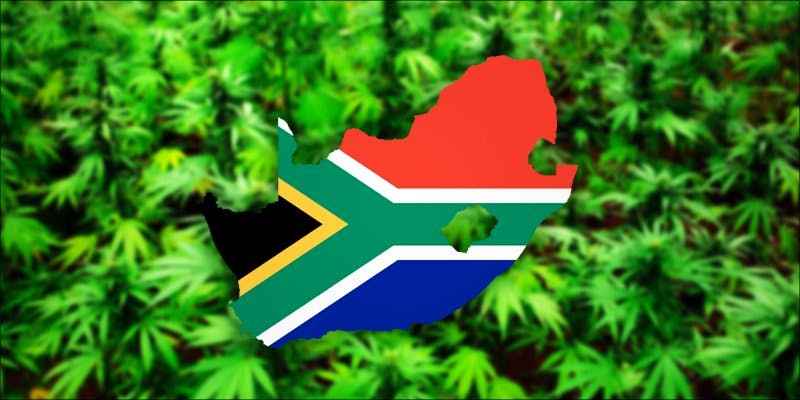 southafrica hero2 These Marijuana Moms Say Smoking Weed Makes Them Better Parents