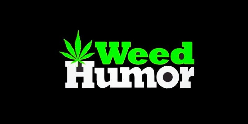 weedsnapchat 7 To Put It Bluntly, You Need To Watch This New Women & Weed Show