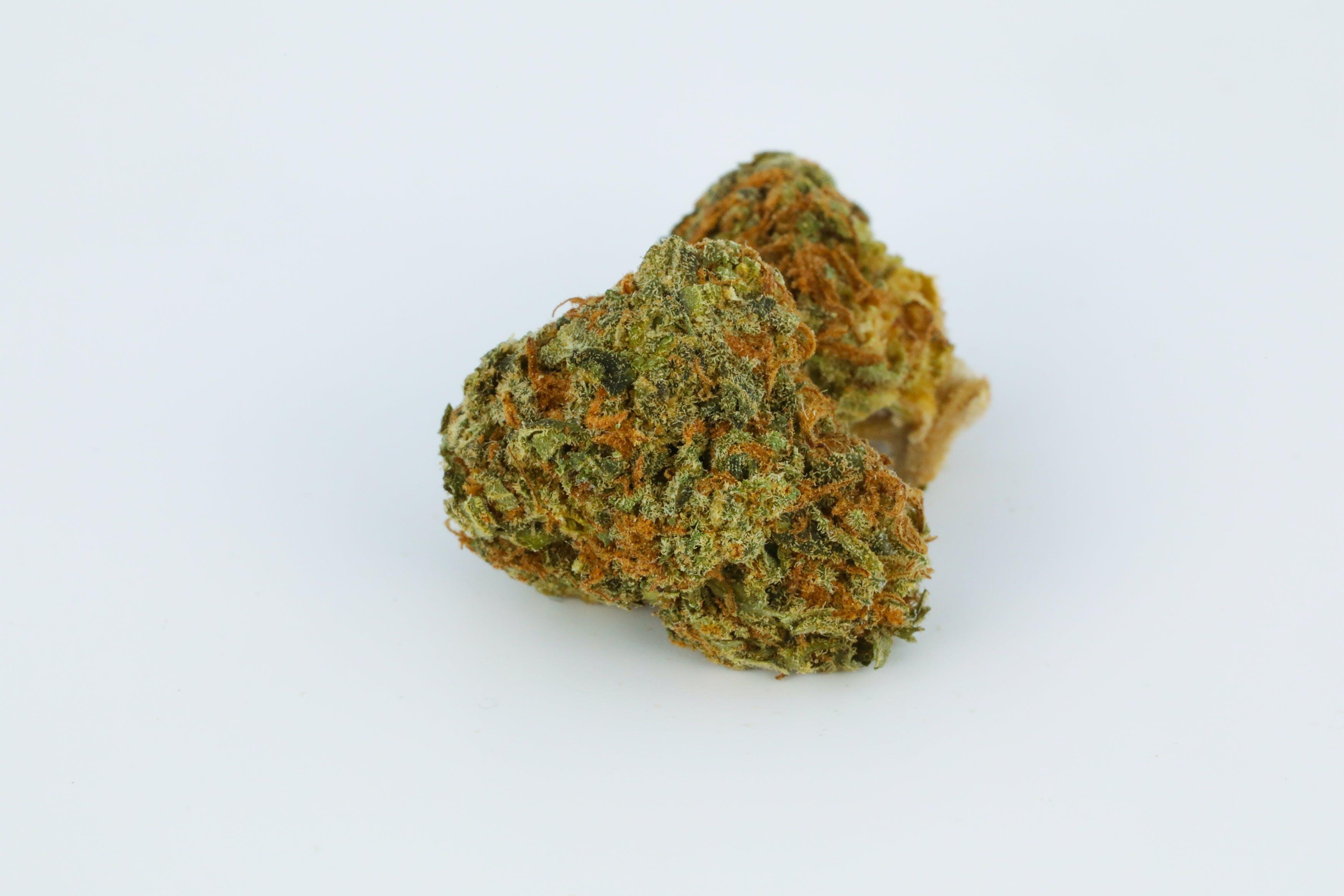 Stardawg Weed; Stardawg Cannabis Strain; Stardawg Hybrid Marijuana Strain