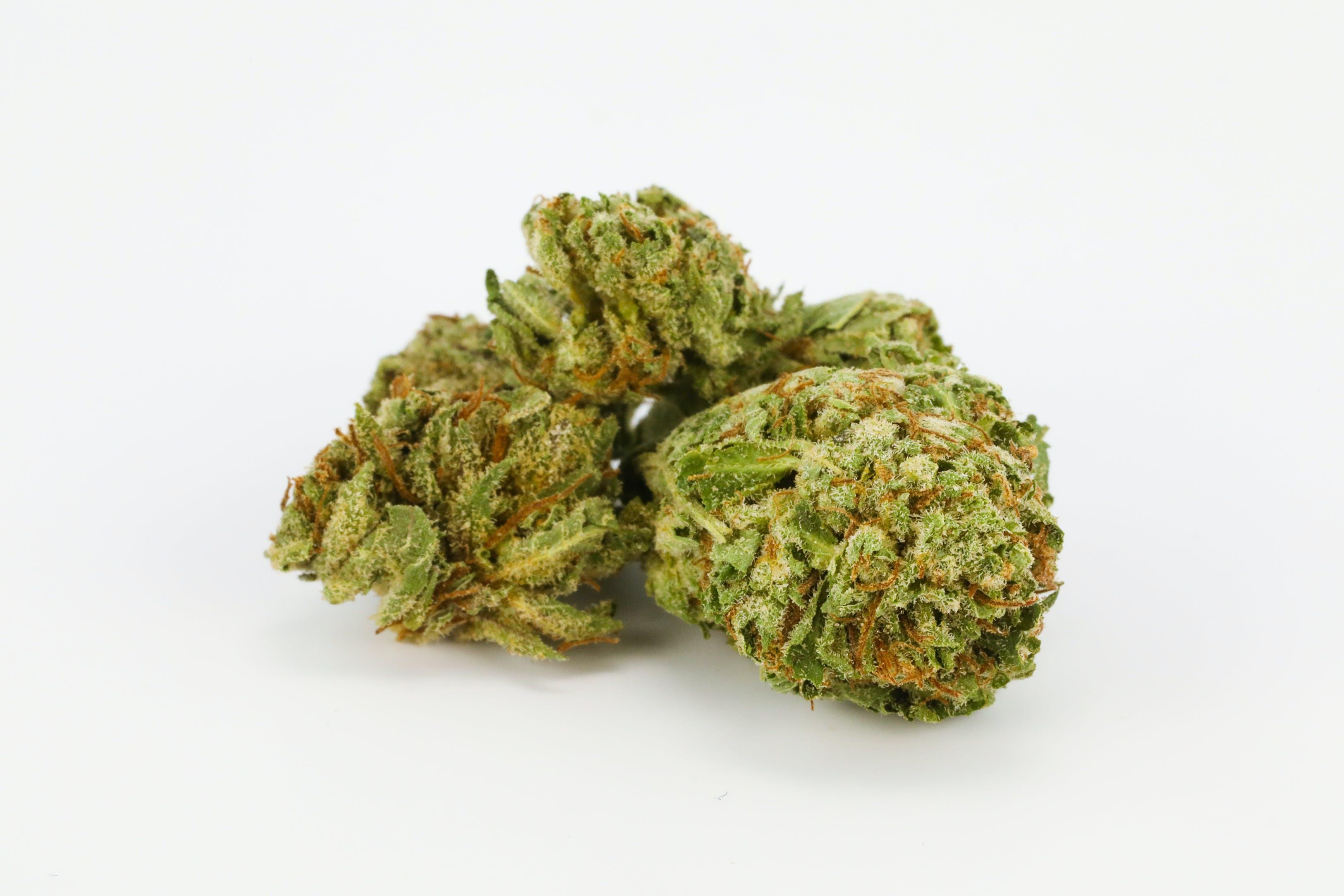 Leia OG Weed; Leia OG Cannabis Strain; Leia OG Hybrid Marijuana Strain