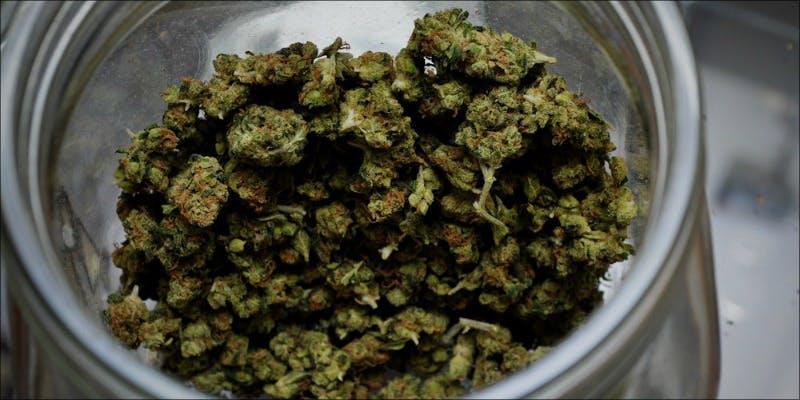 10 Best Sativas 3 Will Cannabis Be Seen As Medicine Under New International Law?