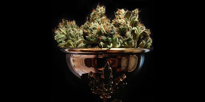 10 Best Sativas 4 Will Cannabis Be Seen As Medicine Under New International Law?