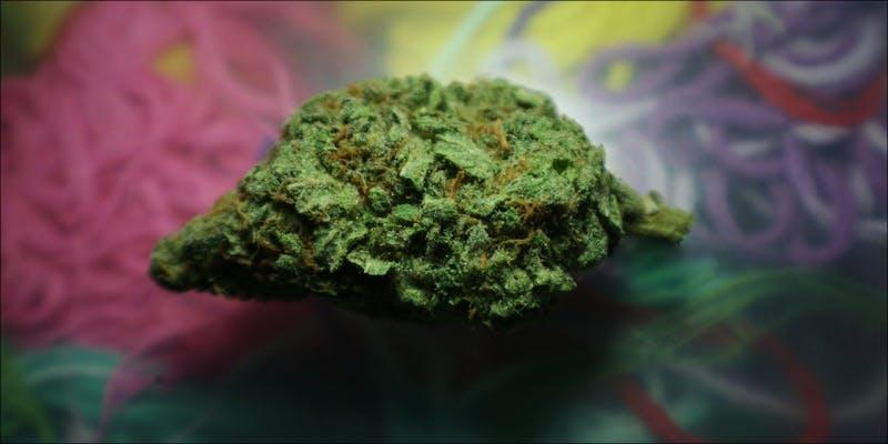 10 Best Sativas 6 Will Cannabis Be Seen As Medicine Under New International Law?