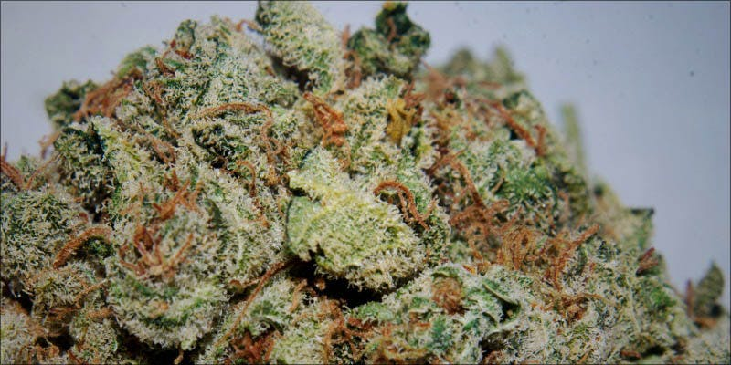 10 New Strains 3 Will Cannabis Be Seen As Medicine Under New International Law?