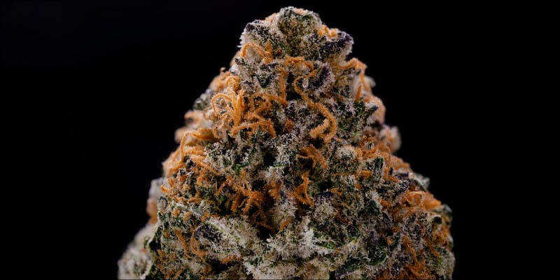 10 New Strains 4 Will Cannabis Be Seen As Medicine Under New International Law?