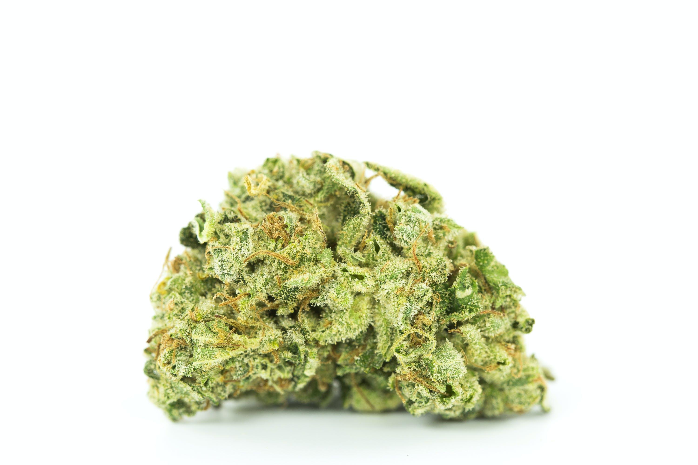 Alien Dawg Weed; Alien Dawg Cannabis Strain; Alien Dawg Hybrid Marijuana Strain