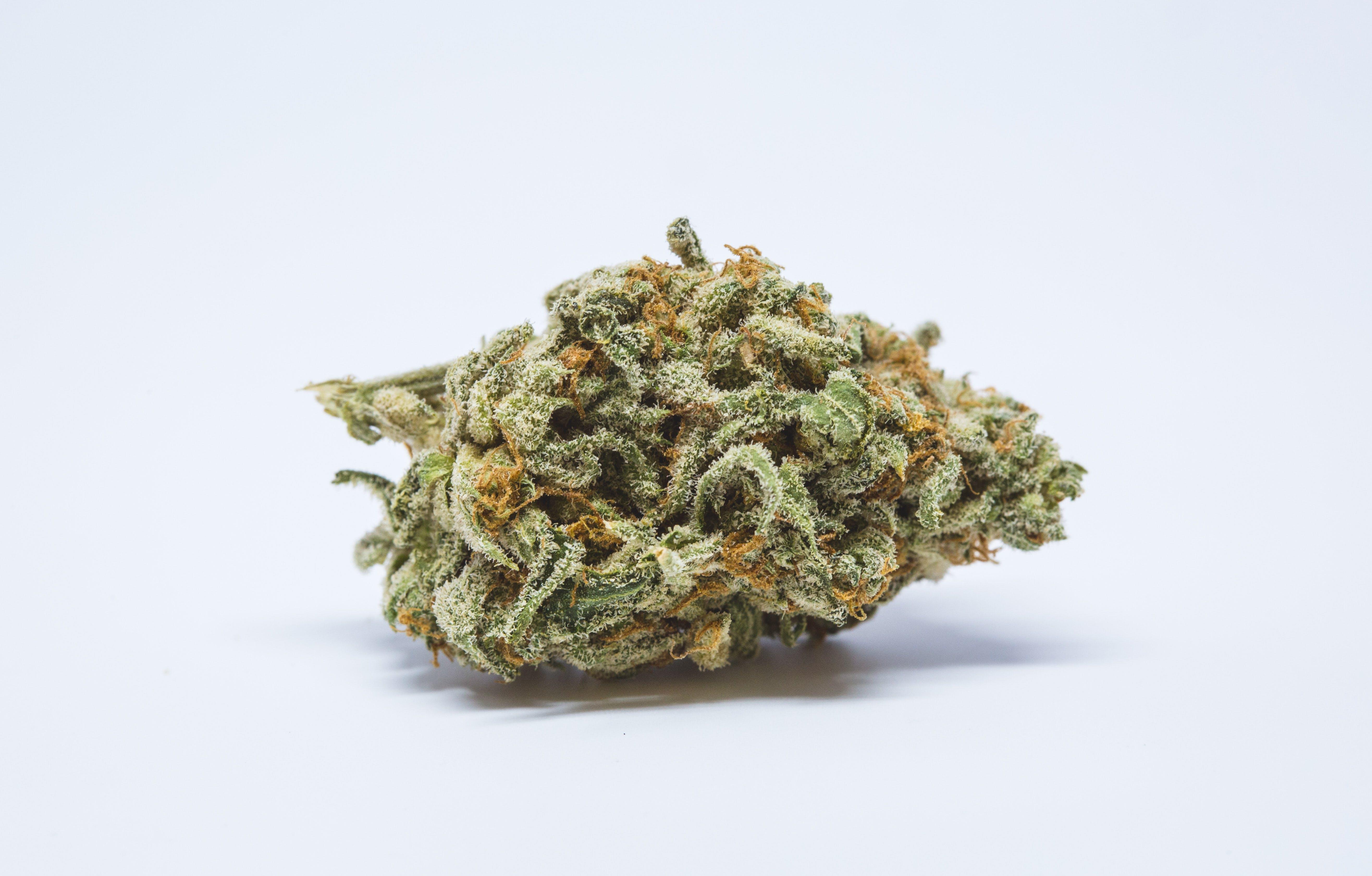 King Louis XIII Weed; King Louis XIII Cannabis Strain; King Louis XIII Indica Marijuana Strain