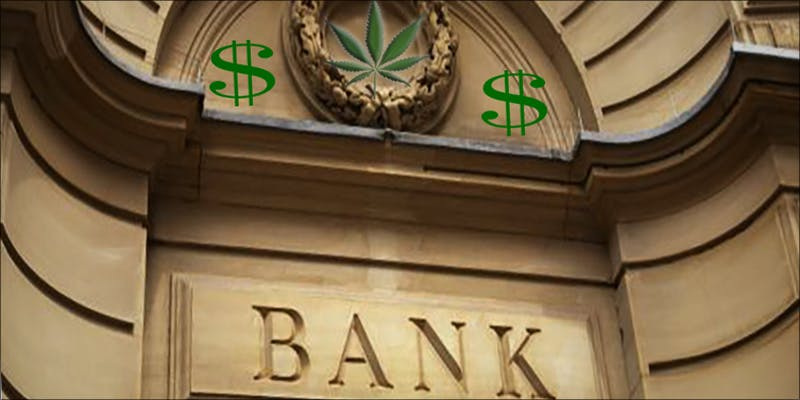BERNIE SANDERS URGES 1 Will Cannabis Be Seen As Medicine Under New International Law?
