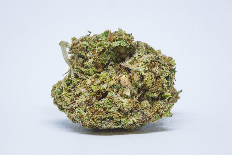 Black Jack Weed; Black Jack Cannabis Strain; Black Jack Hybrid Marijuana Strain