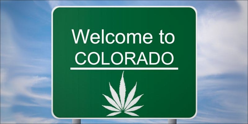 Colorado Plans Crackdown hero 11 Best Clear Headed Sativa Strains To Help You Concentrate