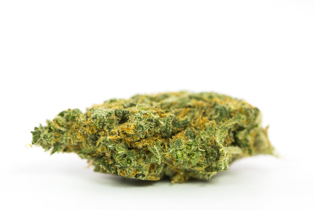 Colombian Gold Weed; Colombin Gold Cannabis Strain; Colombian Gold Sativa Marijuana Strain