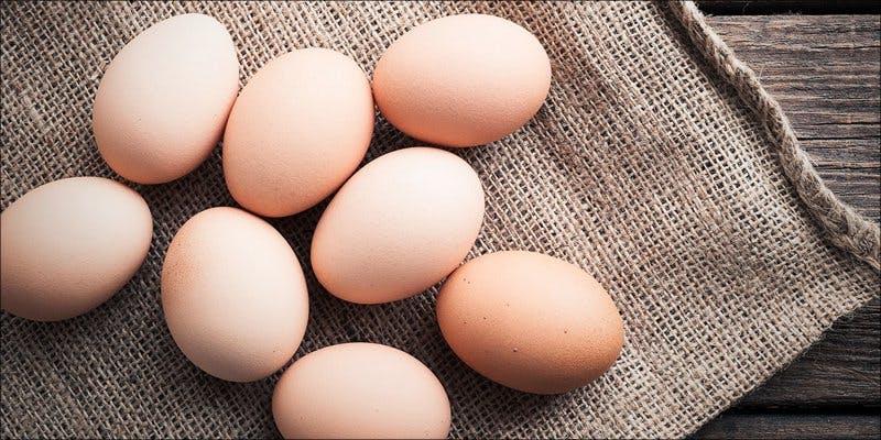 Egg Pipe