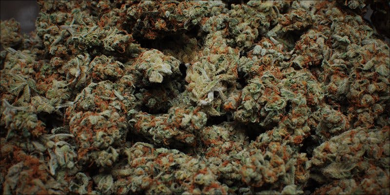 Flush Your Weed 7 Will Cannabis Be Seen As Medicine Under New International Law?