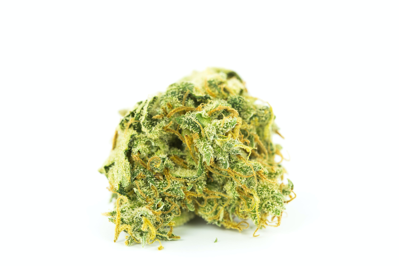Galactic Jack Weed; Galactic Jack Cannabis Strain; Galactic Jack Sativa Marijuana Strain