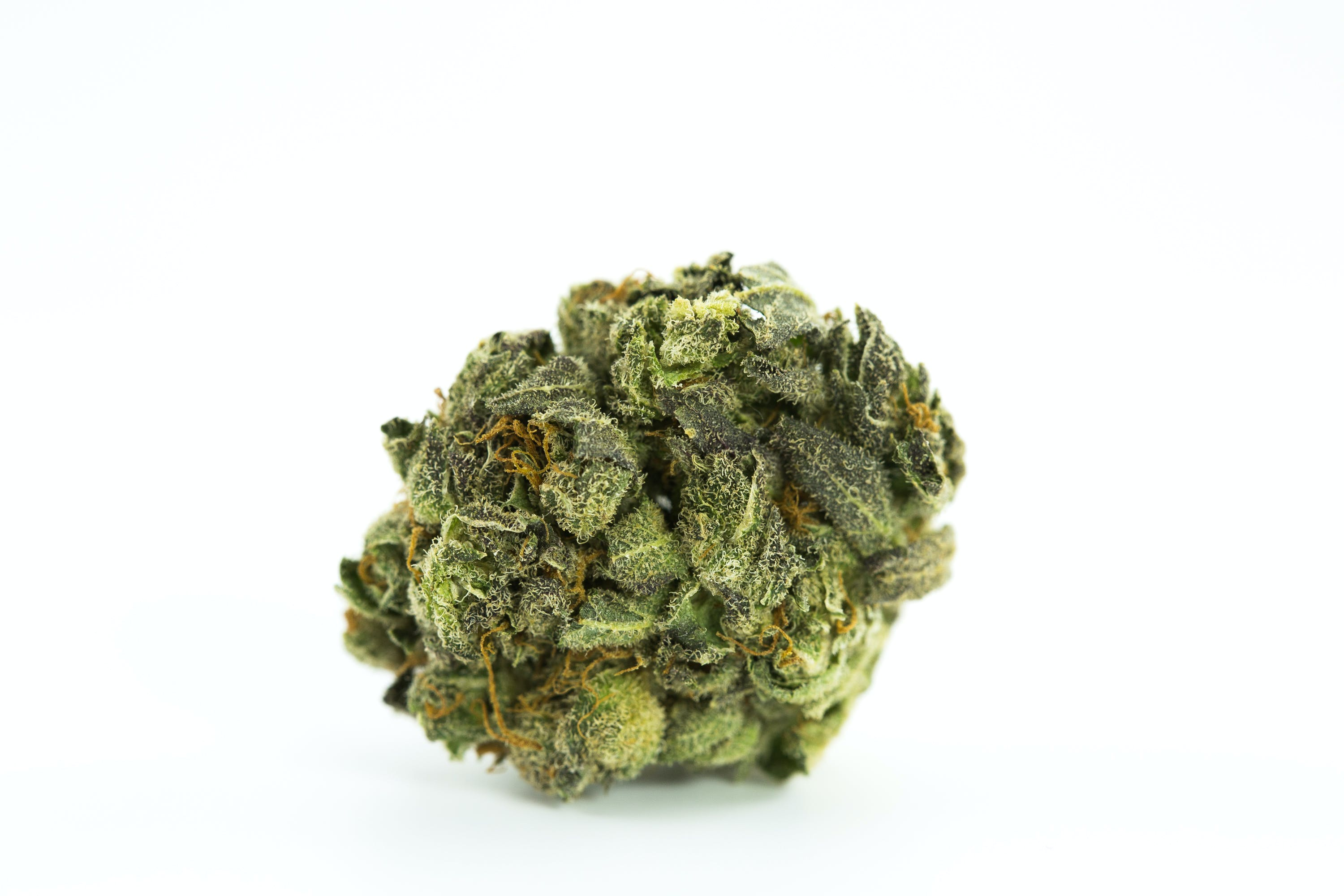 Grapefruit Strain