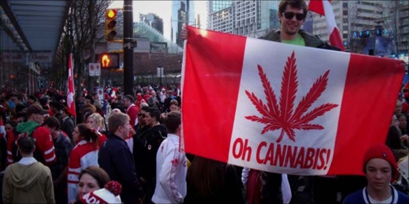 Has Trudeau Broken 3 Cannabis Cultures Montreal Dispensaries Raided 24 Hours After Opening