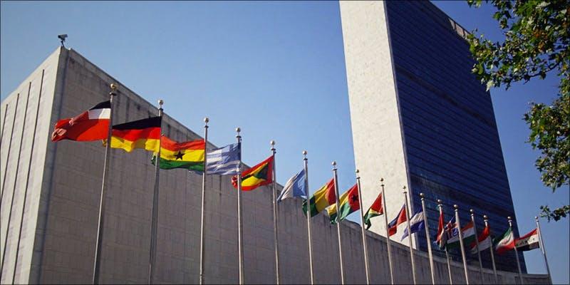 MEDICAL MARIJUANA 1 Will Cannabis Be Seen As Medicine Under New International Law?