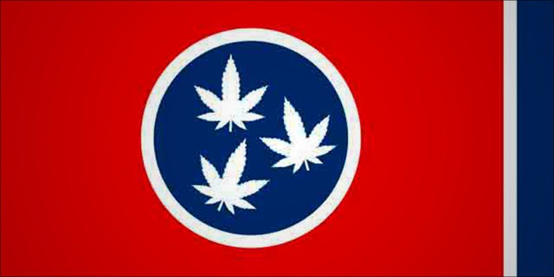 Tennessee Republican Derides 1 Will Cannabis Be Seen As Medicine Under New International Law?