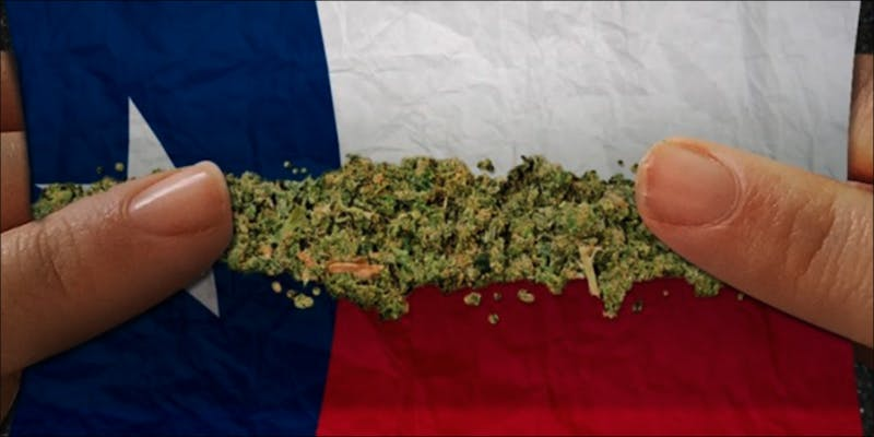 Texas Senator From 2 This Machine Grows Weed For You & Sends You A Text When Its Ready
