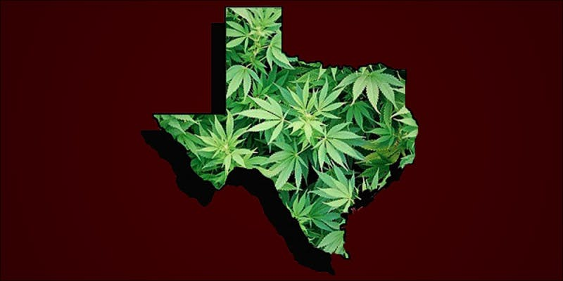 Texas Senator From 3 This Machine Grows Weed For You & Sends You A Text When Its Ready