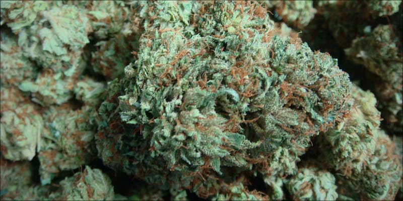 Top 10 Best 6 Will Cannabis Be Seen As Medicine Under New International Law?