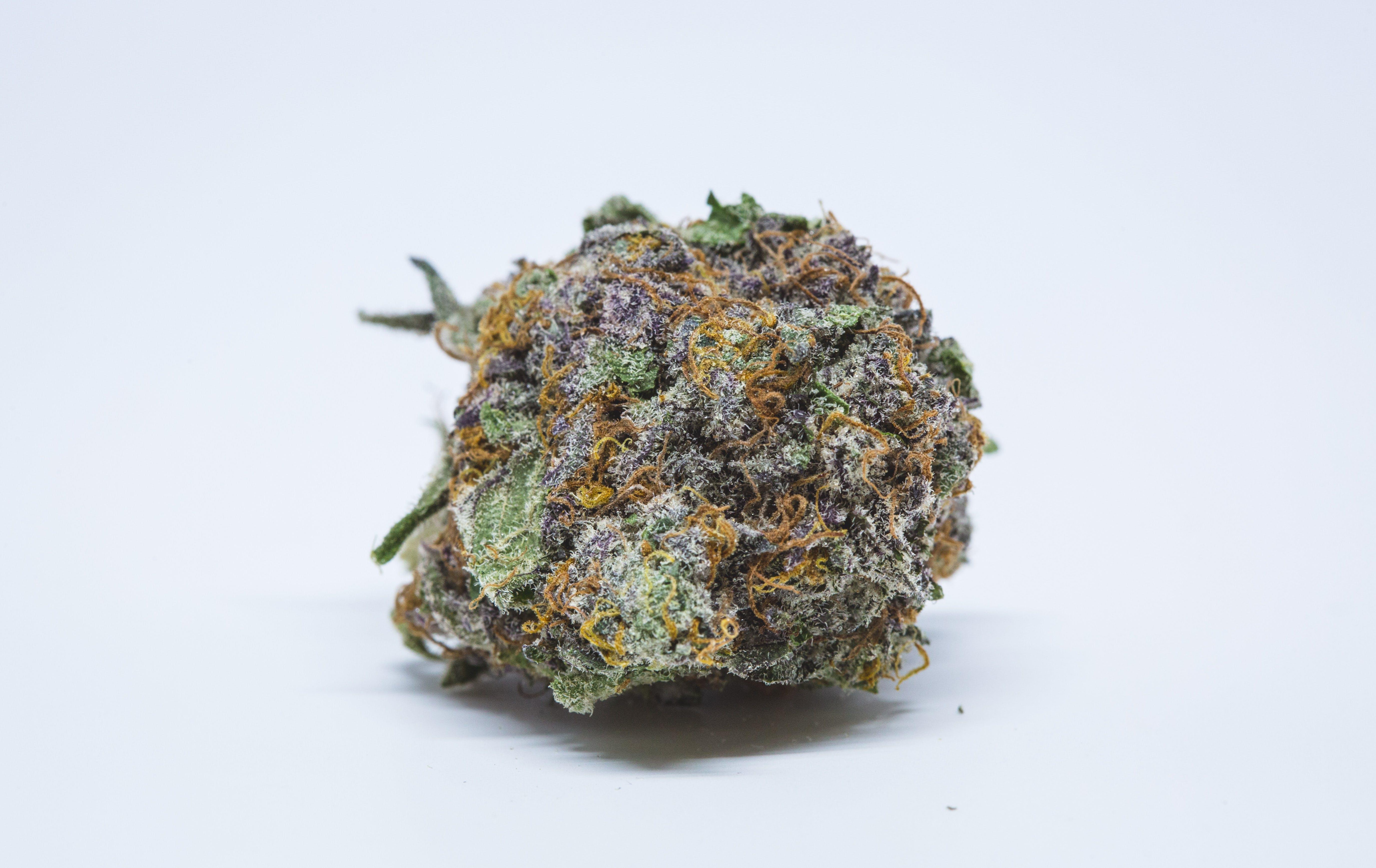 Purple OG Kush Weed; Purple OG Kush Cannabis Strain; Purple OG Kush Hybrid Marijuana Strain