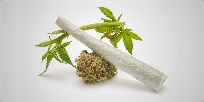 US Women Increasingly 2 Will Cannabis Be Seen As Medicine Under New International Law?