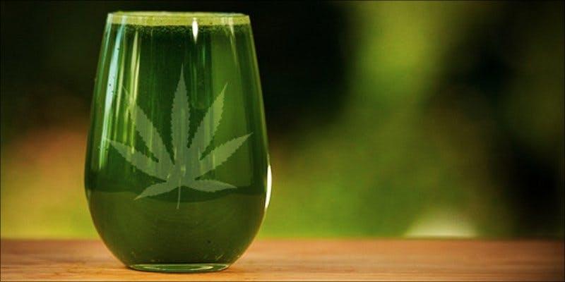 cannabischef 1 Will Cannabis Be Seen As Medicine Under New International Law?