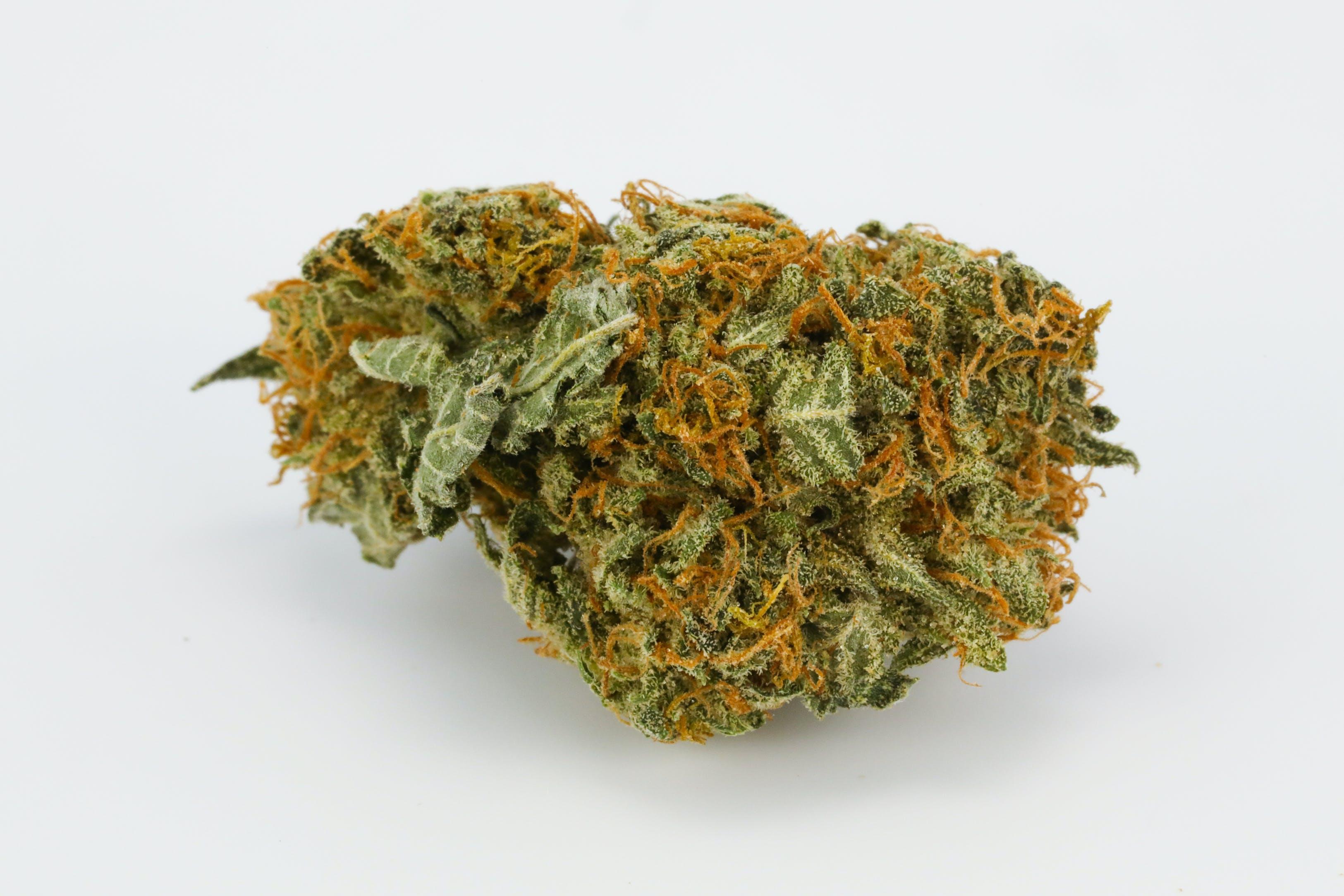 Oregon Pineapple Weed; Oregon Pineapple Cannabis Strain; Oregon Pineapple Hybrid Marijuana Strain