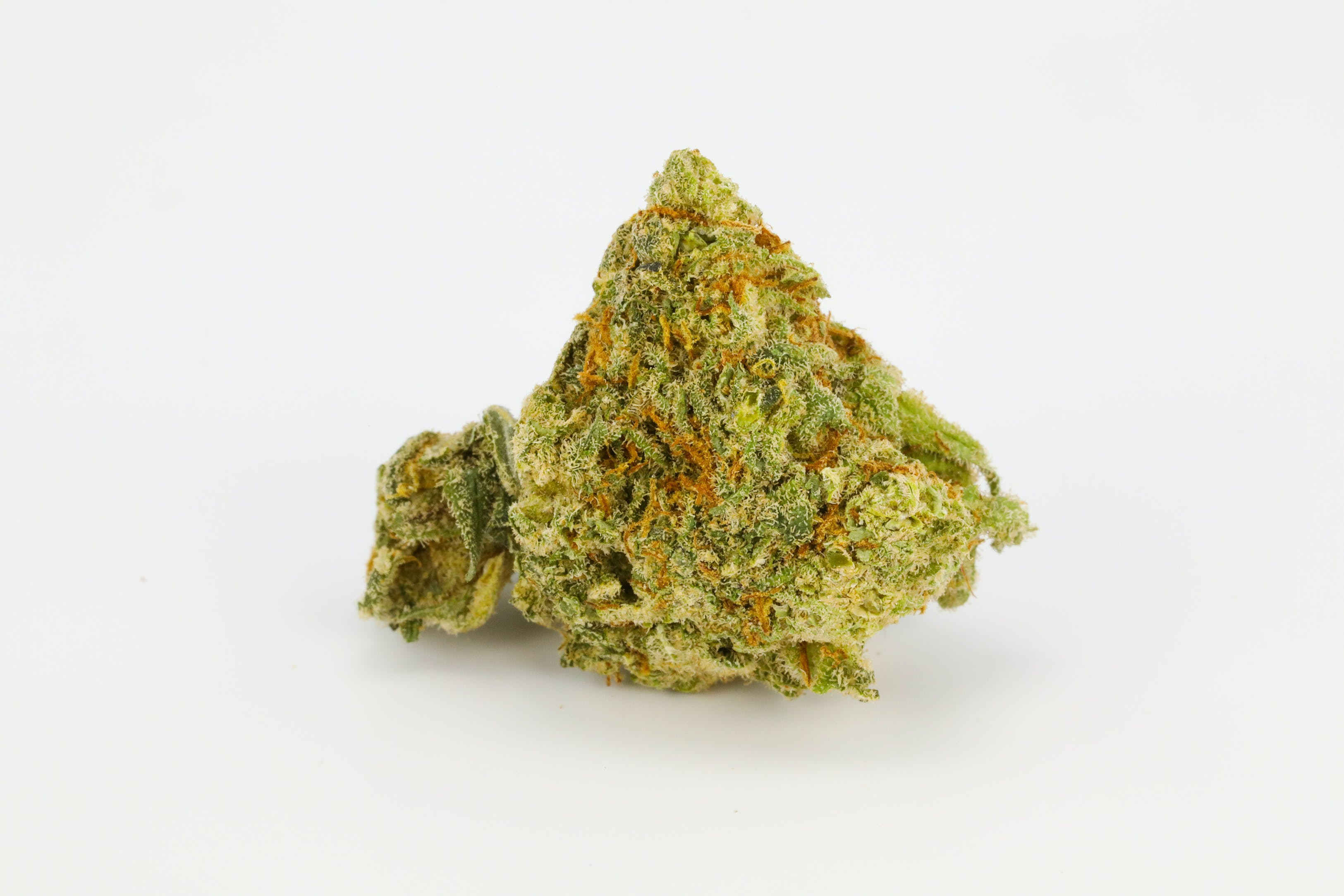 Dr. Who Weed; Dr. Who Cannabis Strain; Dr. Who Hybrid Marijuana Strain