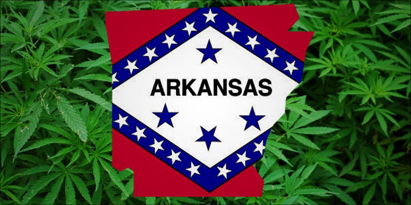 Arkansas Governor Signs 1 Does Weed Make You Stupid?
