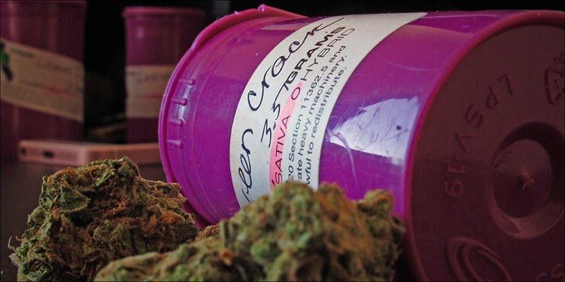 Cannabis Muscular Dystrophy 3 Raspberry Kush: One Of The Most Popular Indica Hybrids Around