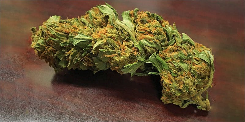 Cannabis Muscular Dystrophy 8 Raspberry Kush: One Of The Most Popular Indica Hybrids Around