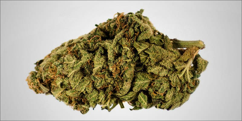 Cannabis vs Cystitis 7 Legal Cannabis Sales Are Booming More Than The Dot Com Era