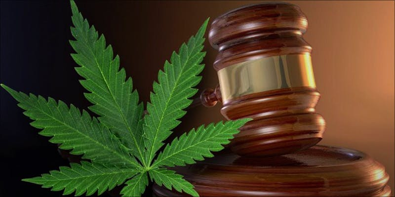 NORTH DAKOTA LAWMAKERS 1 Does Weed Make You Stupid?