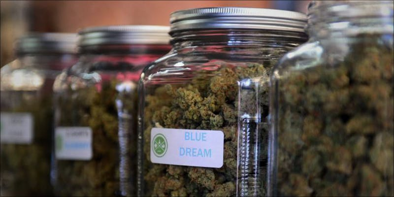 NORTH DAKOTA LAWMAKERS 3 Why Are North Dakota Lawmakers Delaying Medical Cannabis Implementation?