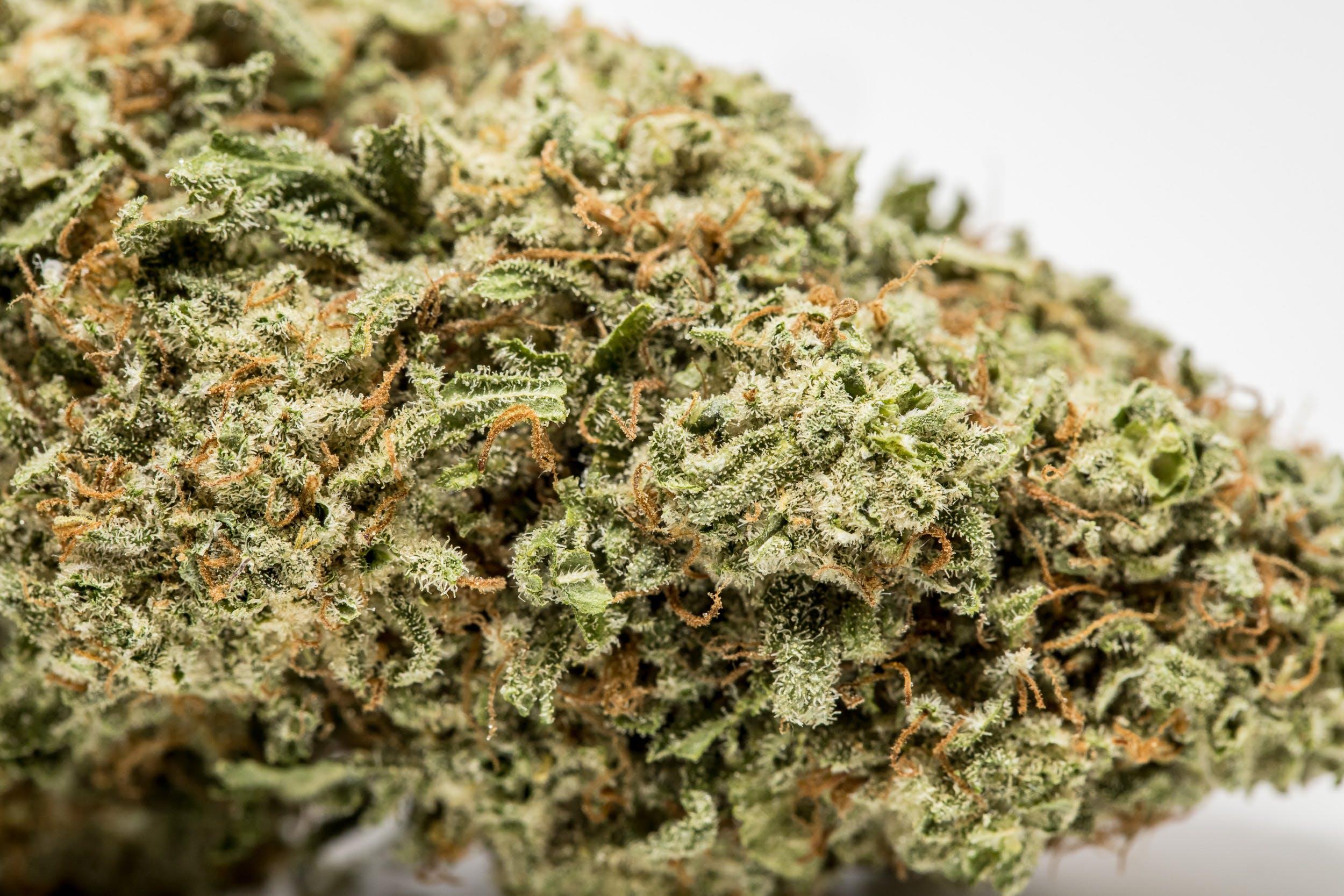 Pineapple Weed; Pineapple Cannabis Strain; Pineapple Hybrid Marijuana Strain