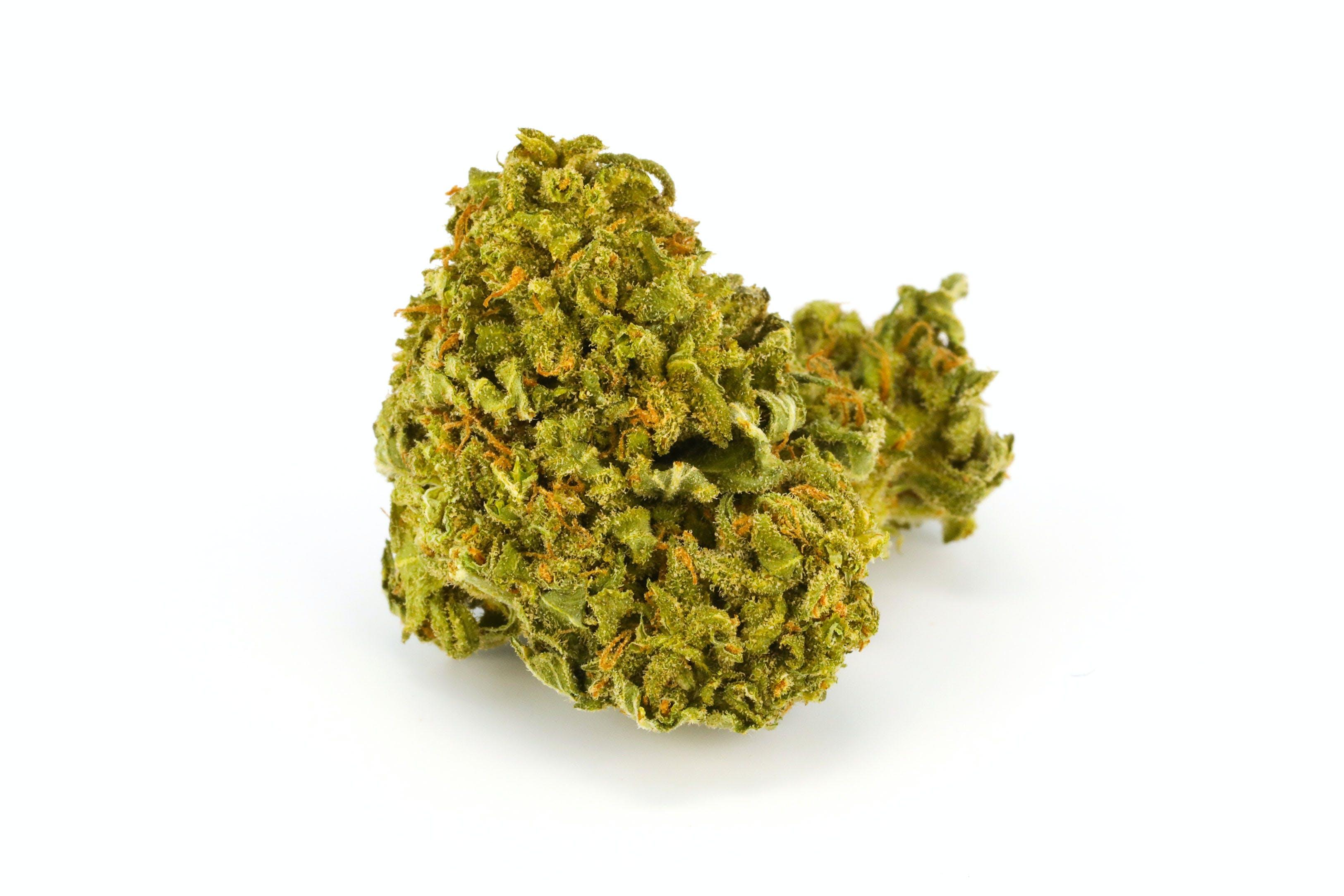 Qwad Dawg Weed; Qwad Dawg Cannabis Strain; Qwad Dawg Hybrid Marijuana Strain
