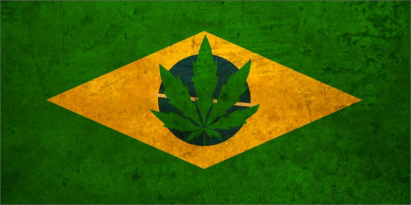 brazil2 Does Weed Make You Stupid?