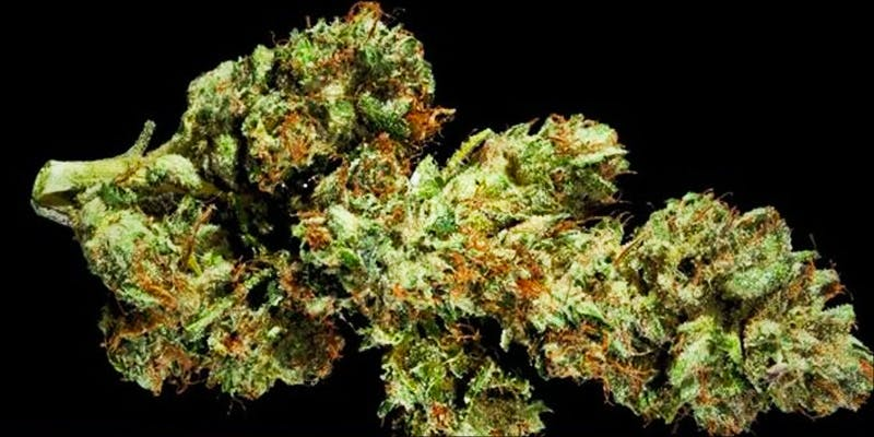 flowerbomb 1 Legal Cannabis Sales Are Booming More Than The Dot Com Era