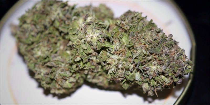 11 Best Clear 7 11 Best Clear Headed Sativa Strains To Help You Concentrate