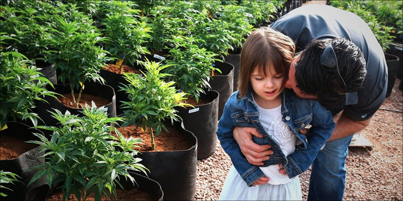 DEA Slapped In 1 Where Did The Huge Social Stigma On Cannabis Users Come From?