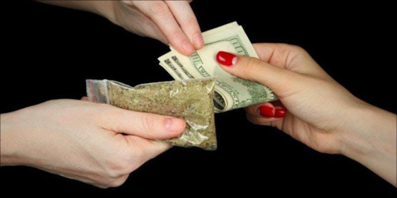 Honest Drug Dealer 3 How To Make Magical Cannabis Ketchup In 3 Easy Steps