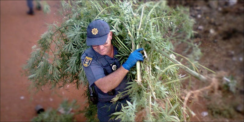 South Africa Gives 2 Oklahoma Lawmakers Want To Make Cannabis Possession A Crime Again