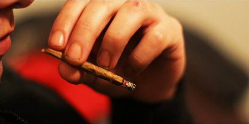 Weed Affect IQ 1 Where Did The Huge Social Stigma On Cannabis Users Come From?