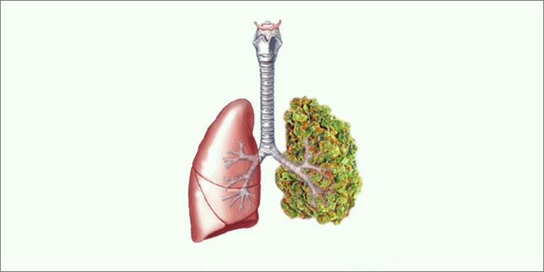 How To Smoke Weed and Keep Your Lungs Healthy | Herb