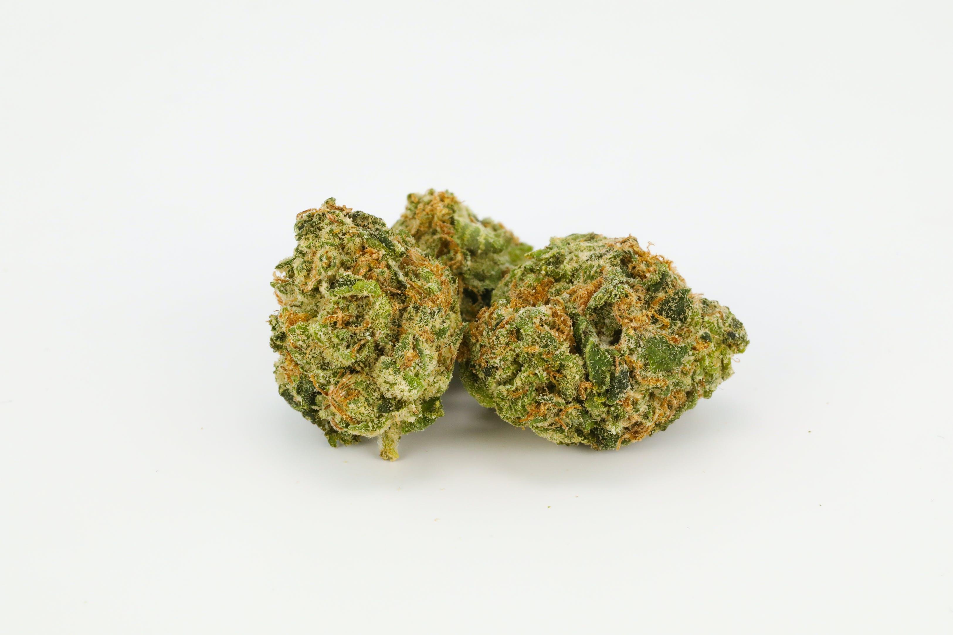 Raspberry Kush Weed; Raspberry Kush Cannabis Strain; Raspberry Kush Indica Marijuana Strain