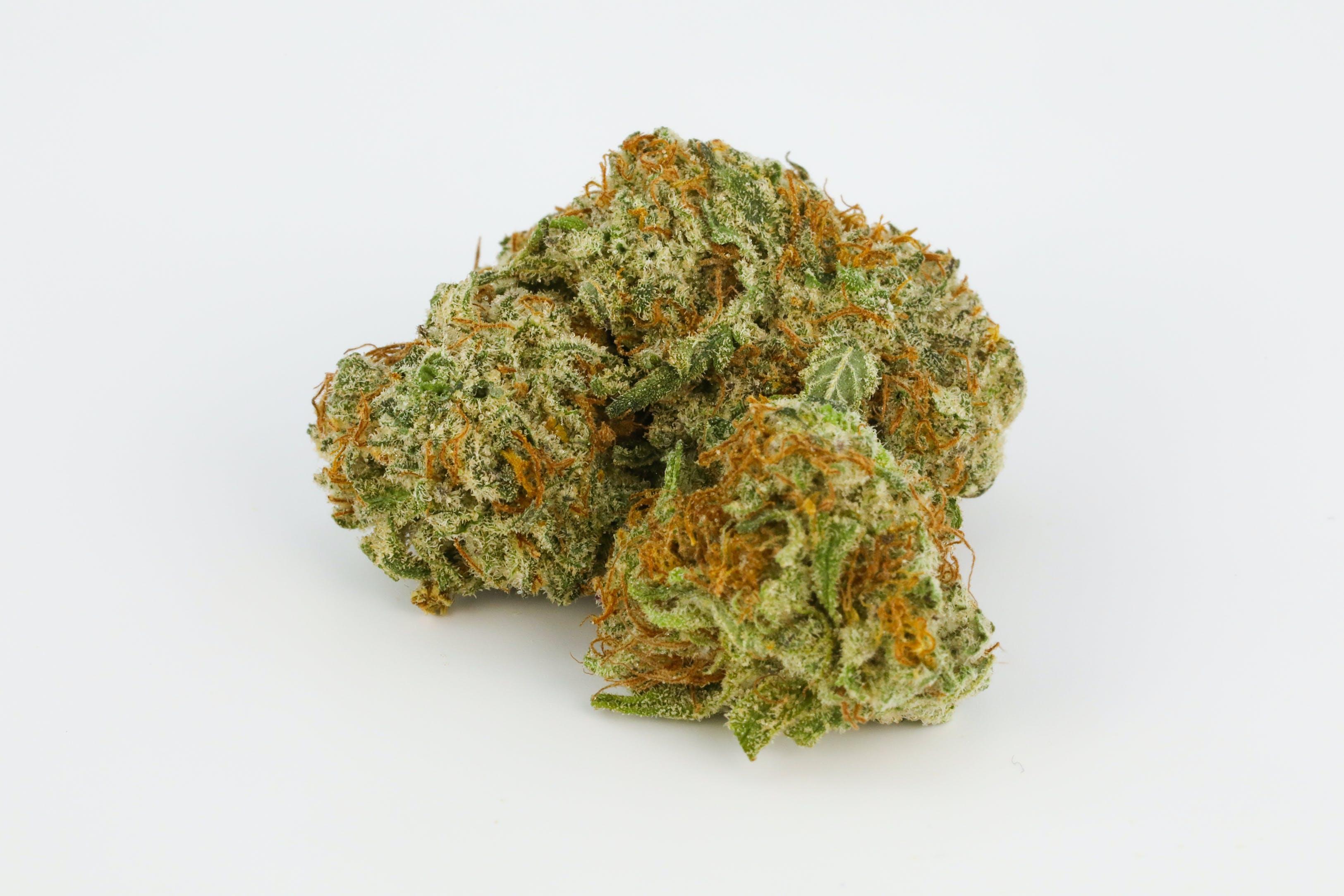 Bubble Gum Kush Weed; Bubble Gum Kush Cannabis Strain; Bubble Gum Kush Indica Marijuana Strain