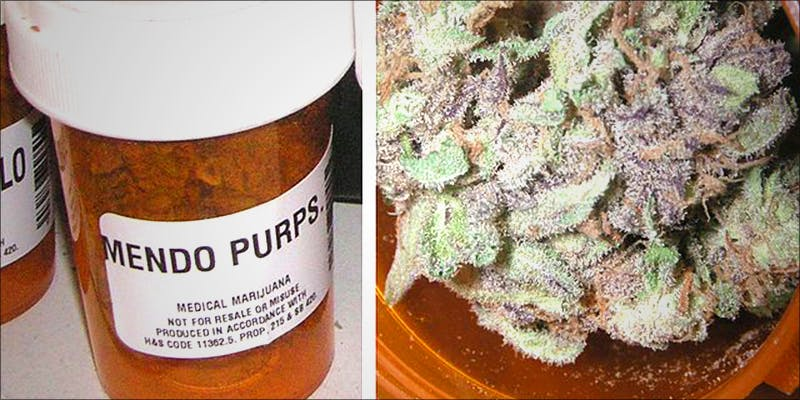 10 Most Common 10 10 Answers To The Most Commonly Asked Questions About Weed