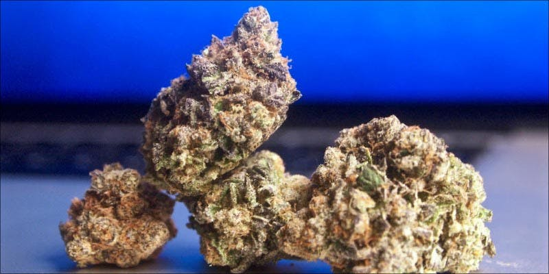 10 Strongest Strains 6 7 New Ways Cannabis Will Dominate Your Wellness Regime